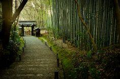 Jizou-in temple, Kyoto