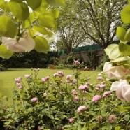 UK: London 'Number 10' garden