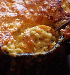Recipe: Creamy macaroni and cheese. Photo: Andrew Scrivani for The New York Times