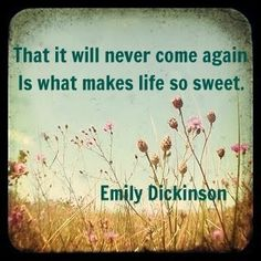 That it will never come again. It what makes life so sweet.