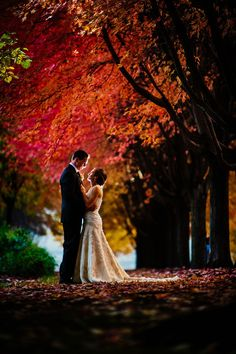 Getting married in the fall? Make sure to capture the beautiful colors of the season in your wedding pictures!