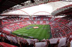 Primeira Liga 30ªJ: SL Benfica 0 - 0 FC Porto, 26Abr. Dom.. 17h00 *BTV1* - page 509 - Geral - SerBenfiquista.com - Fórum de adeptos do Sport Lisboa e Benfica