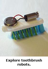 2014 Summer Science Guide: Bristlebot Toothbrush Robots Science Project