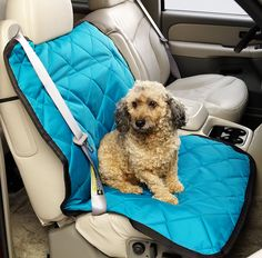 Covercraft Universal Pet Pad for Bucket Seat, Coal * You can get additional details at the image link. (This is an affiliate link and I receive a commission for the sales)