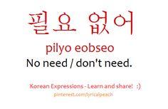 필요 없어 pilyo eobseo No need/don't need /lyricalpeach Korean Language