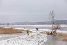 Dem Fluss oberhalb folgend pfeift der Wind mit eisiger Wucht. Zum Glück gibt es direkt daneben einen asphaltierten Radweg der zwar windstill ist, mir aber die Sicht auf den Fluss versperrt. So wandere ich mal ober-, mal unterhalb an der #Oder entlang. Je nachdem, wie kalt mir gerade ist. Begleitet werden meine Schritte auf knirschendem Schnee vom lauten Rufen der Kraniche, die über mir ihre Bahnen ziehen, und dem quietschenden Zischen des Eises. Traumhaft schön ist es hier im #Oderbruch. Bacharach, Snow, Outdoor, Deep Winter, Hiking Trails, Outdoors, Outdoor Games, The Great Outdoors, Eyes