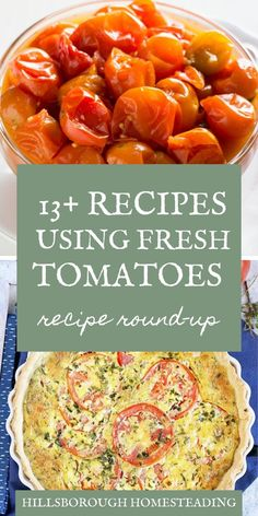 There's nothing better than fresh from the garden tomatoes! To celebrate, I've c… Soup Appetizers, Appetizer Salads, Great Appetizers, Garden Tomato Recipes, Fresh Tomato Recipes, Tomato Ideas, Tomato Soup From Scratch, Tomato Dishes, Real Food Recipes