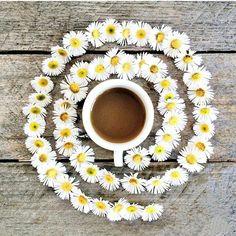 Coffee and friends Coffee Is Life, I Love Coffee, Coffee Break, My Coffee, Coffee Cafe, Coffee Drinks, Coffee Shop, Coffee Lovers, Tea Illustration