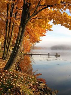 Beautiful pic of a fall scene by a lake with the beautiful fall foliage on the tree. Landscape Photography Tips, Nature Photography, Beautiful Places, Beautiful Pictures, Beautiful Scenery, Fall Vacations, Autumn Scenes, Photo D Art, Fall Pictures