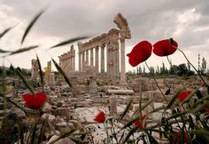 "humanoidhistory: "" The ancient Roman ruins at Baalbek, Lebanon, February (National Geographic) "" Annabeth Chase, National Geographic, Heroes Of Olympus, Greek Gods, Ancient Romans, Greek Mythology, Ancient Greece, Poppies, Aphrodite"