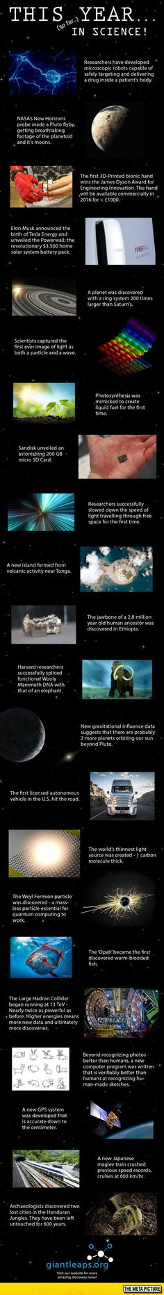This Year So Far In Science - The Meta Picture << and they say science is slow.. it just needs time! Some things are more important than your floating cars