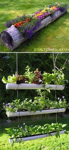 I like the idea of repurposing a fallen tree into a planter.  The hanging planters are an interesting space saver.