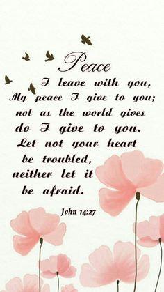 John 14 : 27