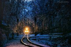 Зимний венгерский лес