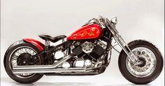 Custom Yamaha DragStar 650  | Wild Boar