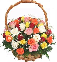 24 Mixed roses basket of different colors is for special people gifted on special Occasions. This Beautiful Flower Basket Available in Shop2Hyderabad.