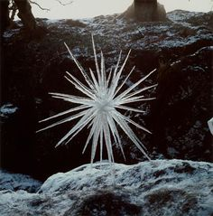 ice spiral andy goldsworthy