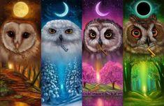 "Zhui Star DIY Diamond Painting ""Four seasons owl"" Embroidery Full Square Diamond Cross Stitch Rhinestone Mosaic Decor Gift Diamond Drawing, 5d Diamond Painting, Buho Tattoo, Owl Embroidery, Owl Pictures, Beautiful Owl, Wise Owl, Cross Paintings, Owl Paintings"