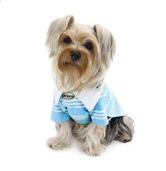 Dog Shirt - Klippo Aqua Blue Textured Polo Dog Shirt for Him