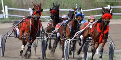 9a0e9b1cb2d19f55a23b6654539f702d chicago ii harness racing countdown to super night begins chicago barn to wire harness barn to wire harness at edmiracle.co