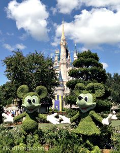 Why do Disney fans love Disney so much? My answer ----> The Disney Difference: Seeing is Believing