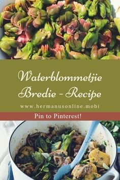 Waterblommetjie bredie, a traditional South Africa Recipe Lamb Recipes, Cooking Recipes, Lamb Ribs, Juice Of One Lemon, One Pot Dishes, South African Recipes, Cooking Time, Food Inspiration, Green Beans