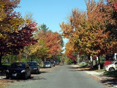Ottawa Ontario Canada October 2010 — Sandy Hill  15 by dugspr — Home for Good, via Flickr