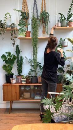Living Room Plants, House Plants Decor, Bedroom With Plants, Plant Rooms, Plant Wall Decor, Indoor Garden, Indoor Plants, Home And Garden, Small Plants