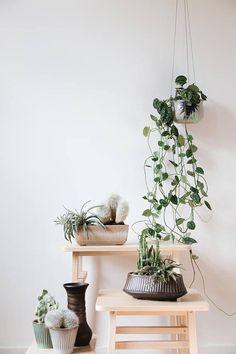 Vintage brown cactus planter | Rectangular cactus pot | Retro cactus planter | Rectangular planter |