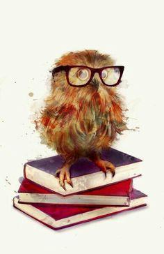 Coruja e os livros