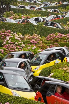 Smart Cars on Lombard Street