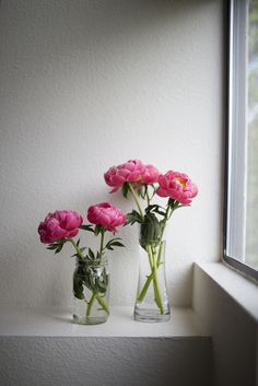The life of peonies—a happy day