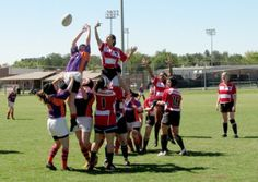 Rugby: A Sport for the Tough Athlete | The Arkansas Traveler