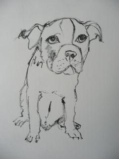 Pet Portraits, Pets