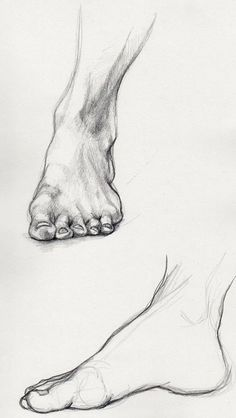 Learn To Draw People - The Female Body - Drawing On Demand Feet Drawing, Body Drawing, Anatomy Drawing, Anatomy Art, Life Drawing, Foot Anatomy, Drawing Hands, Human Anatomy, Human Figure Drawing