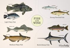 Pairing Fish With Wine: for those of us that are clueless when it comes to pairing wine and food. This site includes more than just fish!