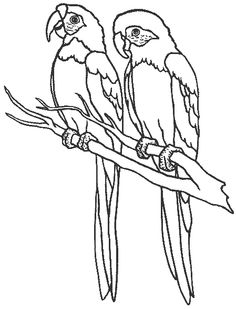 Images of birds to colour in My Kids Puzzles & Pictures at My Kids ...