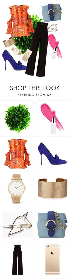 """""""Orange you glad you're my Blue"""" by tiff7700 ❤ liked on Polyvore featuring Miss Selfridge, Sergio Rossi, Larsson & Jennings and Panacea"""