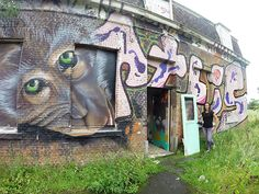 The Dainty Dream, by Mandy Fisher: Doel: Exploring a Ghost Town Doel, Belgium