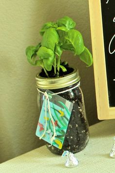 Baby Shower Prize: Herb in Mason Jar with $5 Starbucks gift card