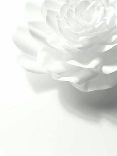 White - Paper artist Jo Lynn Alcorn for Chanel Rainbow Aesthetic, Aesthetic Colors, White Aesthetic, All White, Pure White, White Light, Design Set, 3d Design, Deco Nature