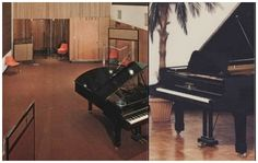 The Famous Trident	  Bechstein Grand Piano