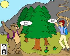"""The typical bear encounter. Usually a loud """" Hey, Bear"""" will send your typical black bear running off into the woods as quickly as he or she can. Remember to store your food properly at night to help keep bears (and you) safe. The old adage a fed bear is a dead bear is true."""