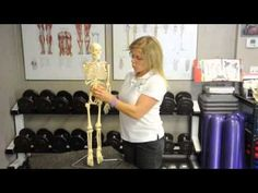 Solutions for back p