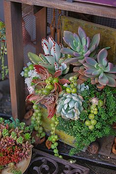 beautiful arrangement