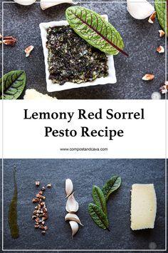 Lemony Red Sorrel Pesto Recipe — Compost and Cava Vegan Recipes Plant Based, Vegetable Recipes, Real Food Recipes, Vegetarian Recipes, Healthy Recipes, Weekly Recipes, Healthy Foods, Sorrel Recipe, Pesto Recipe