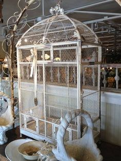 Cocos Collection Antique Inspired Bird Cage Can Add Elegance To A Utilitarian Aviary New Orleans Courtyard Pinterest Cages