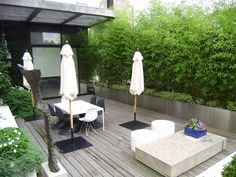 Roof terrace design - 30 examples of green oases of well-being on the terrace - Garden Design Ideas Pergola Shade, Diy Pergola, Pergola Kits, Pergola Ideas, Roof Terrace Design, Rooftop Design, Fargesia, Bamboo Planter, Bamboo Wall