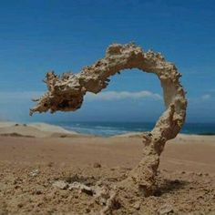 Sand struck by lightning, lightning travels up not down. This is a glass tube now