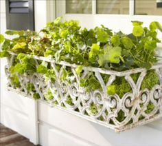 White Gate Window Box. Made from cast aluminum, it's lightweight and painted with a distressed finish for a weathered look.